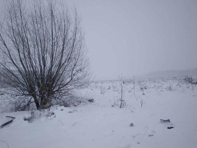 La vista del avión de corta distancia Antonov AN-148 se estrelló después de despegar del aeropuerto Domodedovo de Moscú, en las afueras de Moscú, Rusia, el 11 de febrero de 2018. REUTERS/Stringer NO RESALES. NO ARCHIVES