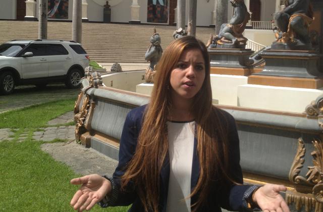 dirigente de Acción Democrática Luisana Bermúdez