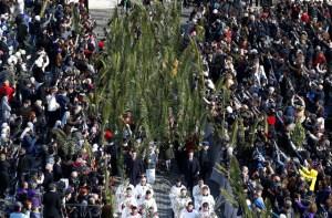 En imágenes: El Domingo de Ramos en el Vaticano