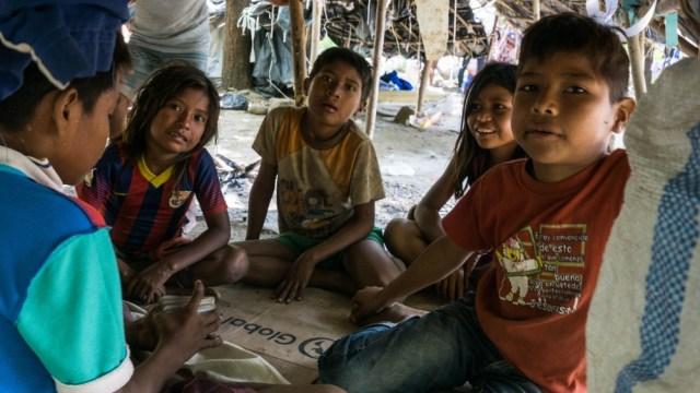 Un grupo de niños Yukpa juega a las cartas para pasar el tiempo en una de las tiendas improvisadas (Foto Bram Ebus / Al Jazeera)