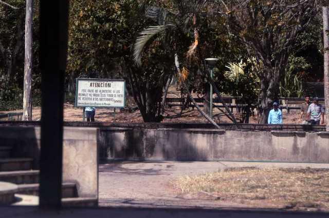 Parque Francisco de Miranda, lugar donde se encuentran las Nuprias están bastante custodiadas por los vigilantes del parque. (Foto:Venancio Alczares / extraída de El Universal)