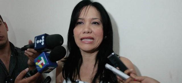 La presidenta de la comisión, Aixa López, expresó que la conformación de este organismo responde a la necesidad de dar cumplimiento a lo establecido en el artículo 32, numeral 1 y 2 de la ley orgánica del sistema eléctrico (Foto: Nota de prensa)