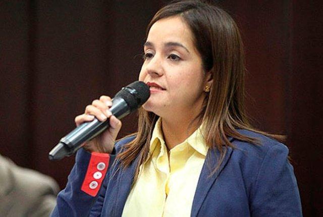 Foto: La Vicepresidenta de la Comisión Permanente de Familia, diputada Karín Salanova / Prensa