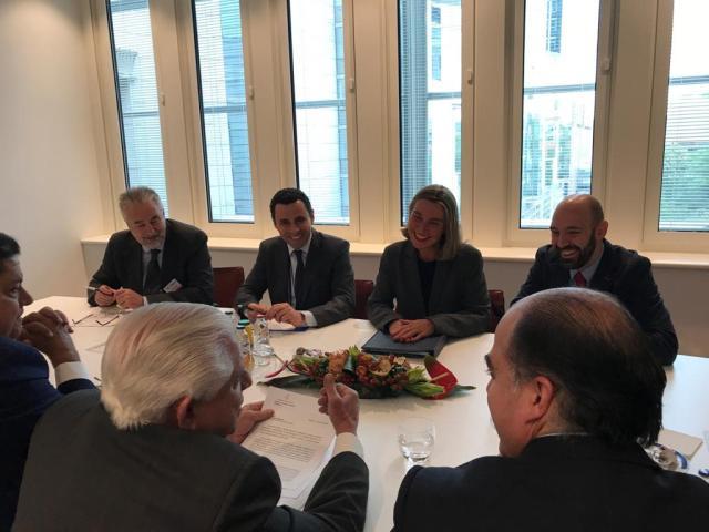Unión Europea Federica Mogherini (1)