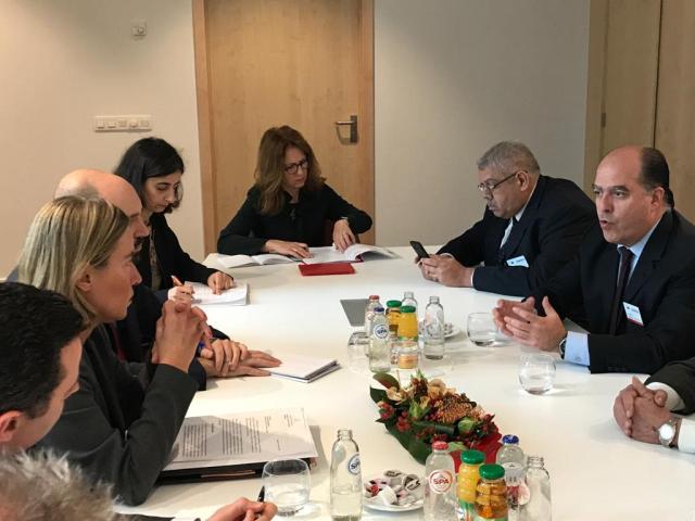 Unión Europea Federica Mogherini y oposición (1)
