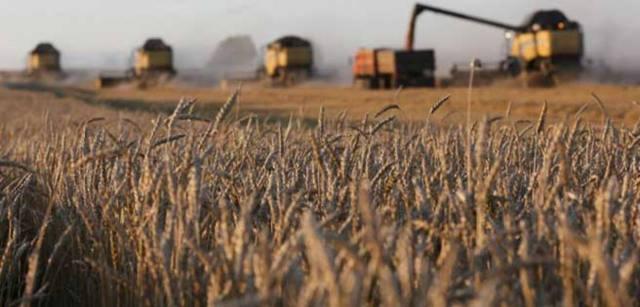"""""""De producir alimentos para todos los venezolanos ahora esas tierras solo producen lástima"""""""