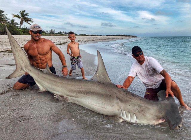 Elliot Sudal junto al tiburón martillo de 3,6 metros. Nadie se fijó en el animal (Elliot Sudal)