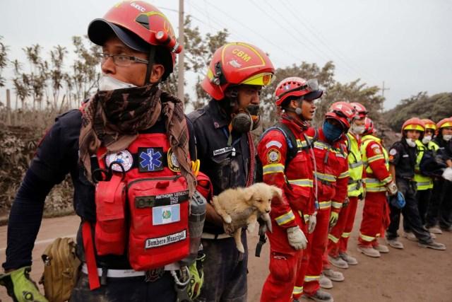 Los bomberos, uno de ellos con un cachorro, permanecen en formación en un área afectada por la erupción del volcán Fuego en la comunidad de San Miguel Los Lotes en Escuintla, Guatemala 4 de junio de 2018. REUTERS / Luis Echeverría