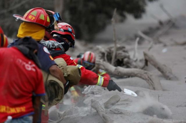 Un bombero arroja cenizas mientras busca cuerpos en un área afectada por la erupción del volcán Fuego en la comunidad de San Miguel Los Lotes en Escuintla, Guatemala 4 de junio de 2018. REUTERS / Luis Echeverría