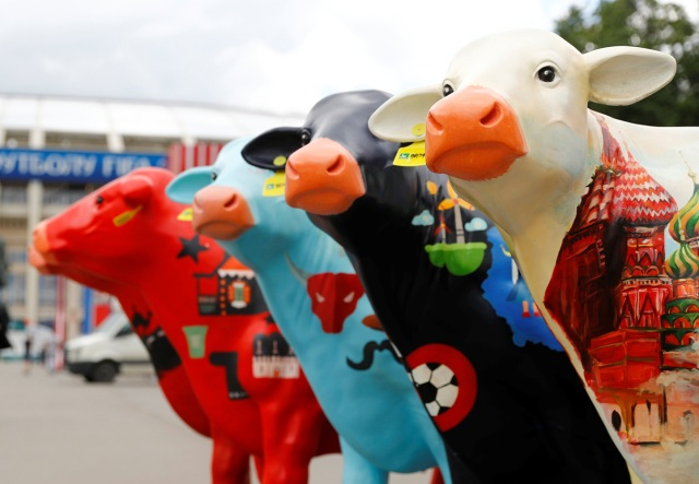 - Estadio Luzhniki, Moscú, Rusia - 13 de junio de 2018 Publicidad de las vacas fuera del estadio REUTERS / Kai Pfaffenbach