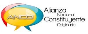Alianza Nacional Constituyente apoya la iniciativa de solicitar al TSJ un Gobierno de Emergencia Nacional