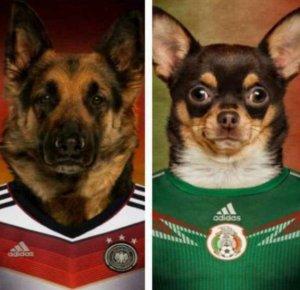 Los mejores memes tras sorpresa de México ante Alemania en el Mundial Rusia 2018