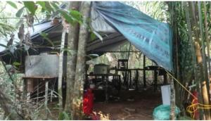 Así son los laboratorios clandestinos, móviles y sofisticados que llevaron al récord de producción de cocaína en Colombia (Fotos)