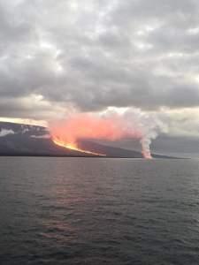 Volcán La Cumbre en el archipiélago de Galápagos continúa en erupción (VIDEOS)