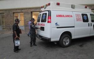 Al menos ocho personas heridas por ataque de abejas en Maracaibo