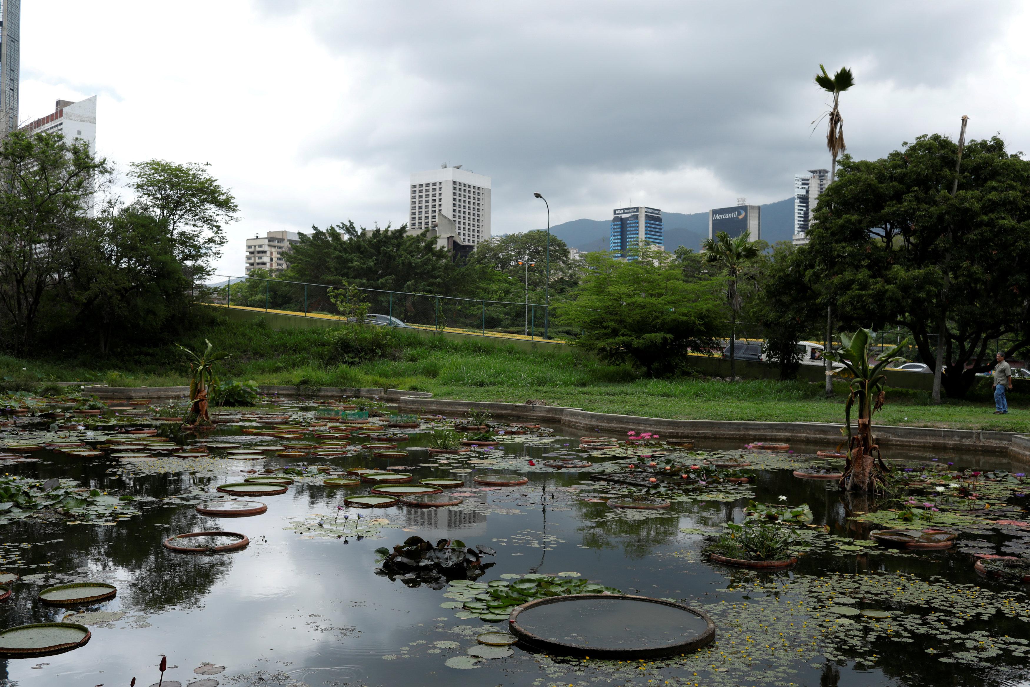 #EscombrosDeMaduro: El Jardín Botánico, patrimonio cultural de la humanidad, muere de sed y abandono (FOTOS)