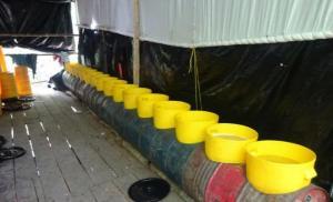 """Autoridades colombianas hallan """"gigantesco"""" laboratorio cocalero en la frontera con Venezuela"""