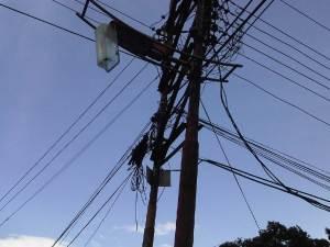 Adolescente muere electrocutada al intentar agarrar mangos en Guárico