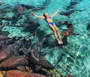 ¡A sobarse! Un tiburón la mordió cuando se sacaba una foto para Instagram