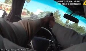 ¡A toda velocidad!… Policía temerario acabó con los bichitos disparando a través de su parabrisas