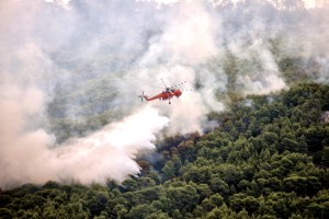 Asciende a 91 el balance de muertos en Grecia por incendios