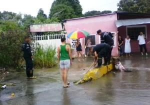 Vecinos de Tinaquillo en Cojedes en alerta por inundaciones #15Ago