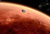 Las especies en Marte podrían ser afines a las terrestres o completamente diferentes
