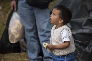 El 80% de los refugiados venezolanos en Colombia no tiene cómo alimentarse, alerta la ONU
