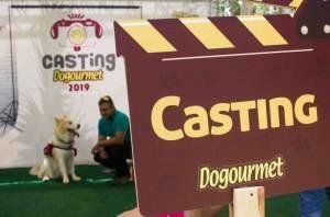 Dogourmet hizo en Caracas el primer casting de su Calendario 2019