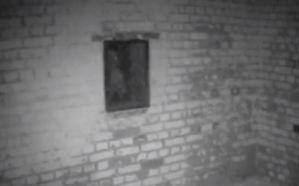 ¡SAPE GATO LOCO!… El tenebroso momento cuando aparece un fantasma en la ventana del castillo (VIDEO)
