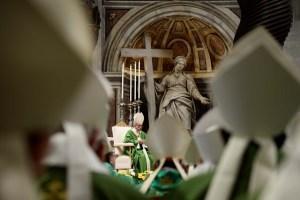 """Papa Francisco introdujo el """"pecado ecológico"""" al crear la Conferencia Eclesial Amazónica"""