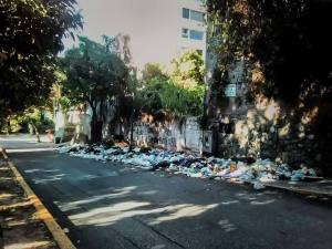 Moscas y podredumbre: Compañeros fiel de los habitantes de San Bernardino (Fotos)