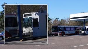 Accidente entre autobuses de Disney deja 15 heridos (Video)