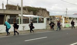 Fundación Arcadia pide al presidente de Ecuador evitar el acoso y la violencia contra venezolanos