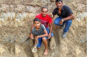Niño descubre fósil de cocodrilo prehistórico en la Amazonía de Brasil (fotos)