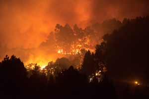 Evacuan a miles de personas por un voraz incendio que consume Gran Canaria (Fotos)