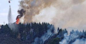 El fuego en Canarias queda estabilizado y evacuados vuelven a sus hogares