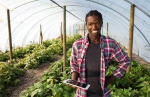 Los millennials están transformando la agricultura africana