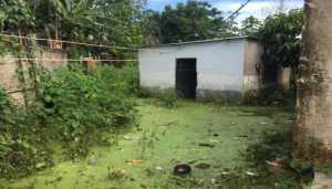 En Puerto Ordaz 250 familias han sido afectadas por inundaciones