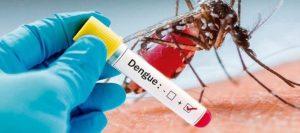 Estudio sobre el dengue en Indonesia aporta esperanzas para contener este virus