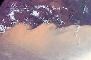 Astronauta capta impresionantes imágenes de densas columnas de humo sobre Australia