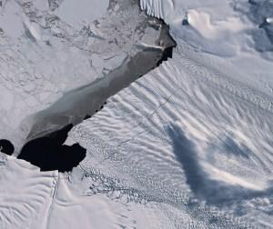 """Los """"signos vitales"""" del planeta Tierra se están debilitando, alertan científicos"""