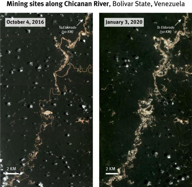 Las minas de oro ilegales en Venezuela solo dominan las amputaciones, contaminación y violencia 11