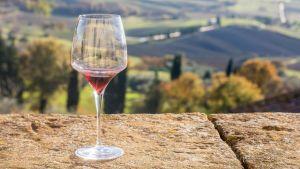Las mejores catas de vinos en Italia: Qué debes saber si te interesa la degustación de vinos