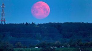 Superluna rosa de abril: qué es y cuándo verla