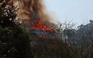 Una chica causó un incendio grande en una montaña… porque quería grabar un VIDEO