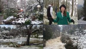 Los habitantes de Tasmania quedaron sorprendidos tras ver nieve por primera vez en 40 años (VIDEO)