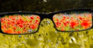 Demuestran que ningunos lentes permiten a los daltónicos ver nuevos colores