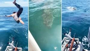 """Se lanzó a nadar con un inofensivo """"tiburón peregrino"""" pero descubrió que fue mala idea (Video)"""