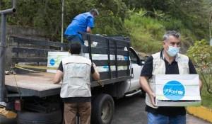 Unicef: 4,3 millones de niños migrantes venezolanos requerirán asistencia humanitaria en 2021